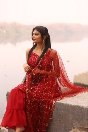 Maroon sharara Suit